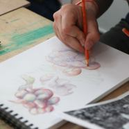 kresba-a-malba_3
