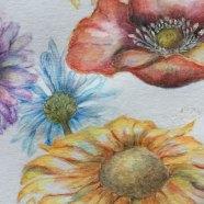 akvarelove-pastelky4